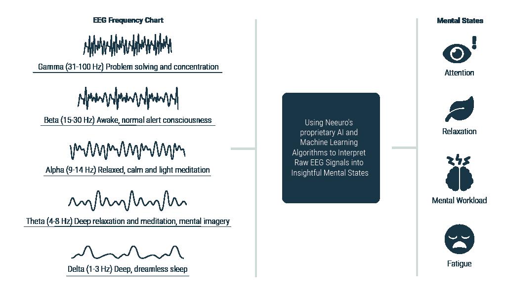 3.2b_Homepage_SenzeBand_HowItWorks_EEGFrequency
