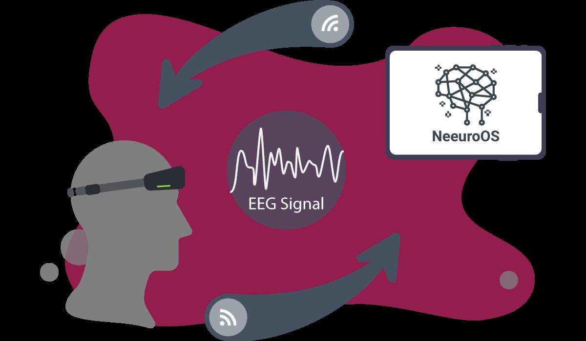 EEG Signal and NeeuroOS